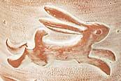 Philip's hare sprig