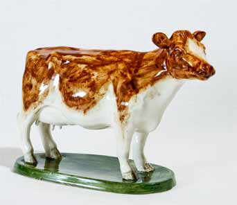 David Sharp Ayrshire cow